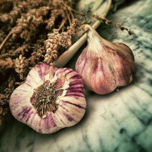 garlic fest flavours package