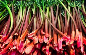 Rhubarb 4-Ways